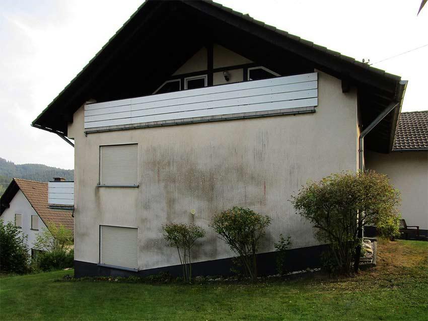 Eine Hausfassade mit starkem Algenbefall